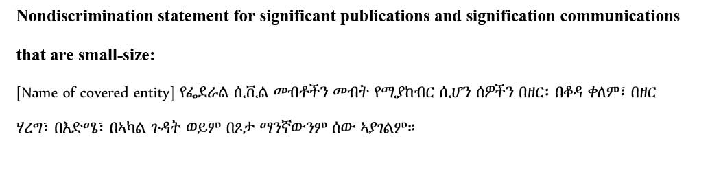 sample ce statement amharic