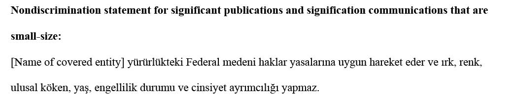 sample ce statement turkish